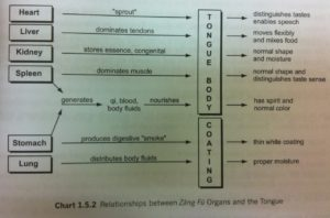 traditional chinese medicine diagnosis study guide qiao yi pdf