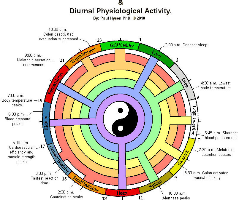 What is Traditional Chinese Medicine and How Does it Work?